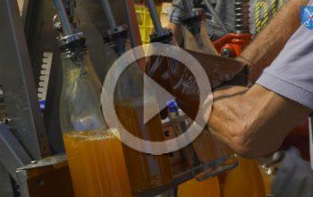 Film pressage de pommes à Dourgne