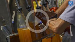 Film du pressage de pommes à Dourgne